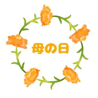 Mother's Day, Carnation, Orange 4