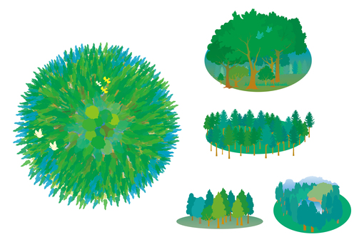 Various forests and forests