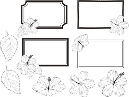 Frame material Hibiscus