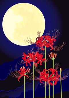 月光_尺寸