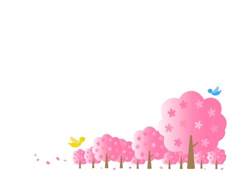 벚꽃 나무와 새
