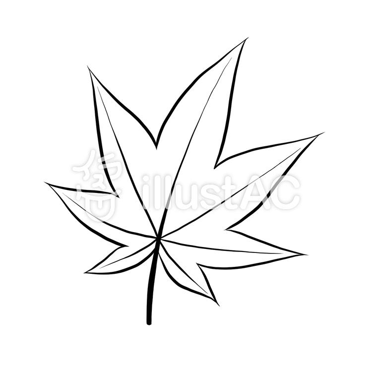 もみじの葉一枚線画塗絵イラスト , No 1160353/無料イラスト