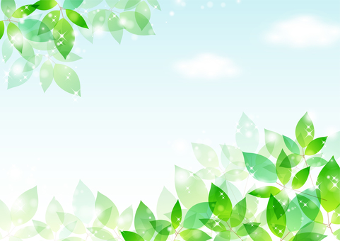 Fresh green material 23