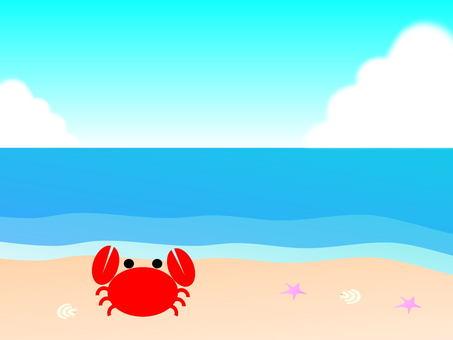 여름 이미지