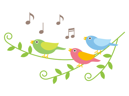 Singing little birds different colors