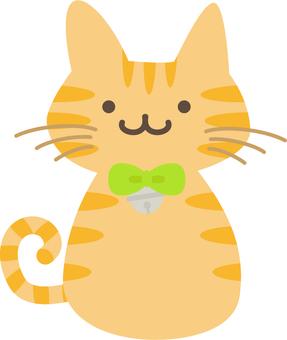 Tea tiger's cat