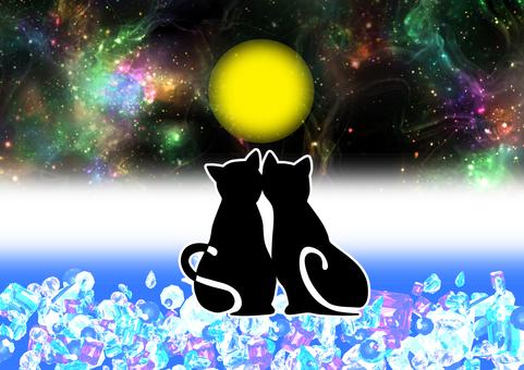 貓的月亮視圖1