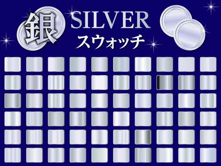 Silver Swatch