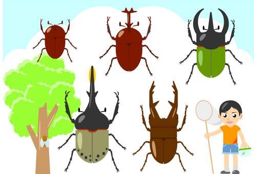 곤충 잡기