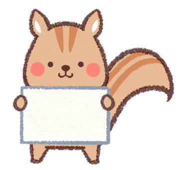 Information card squirrel