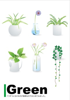 Houseplant set