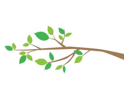 Tree branch 7