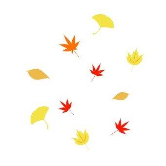 잎 (가을)