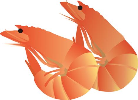 Shrimp Boyle