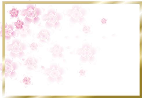 복숭아 꽃 24