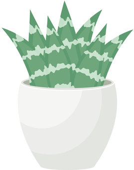 Potted plant 06