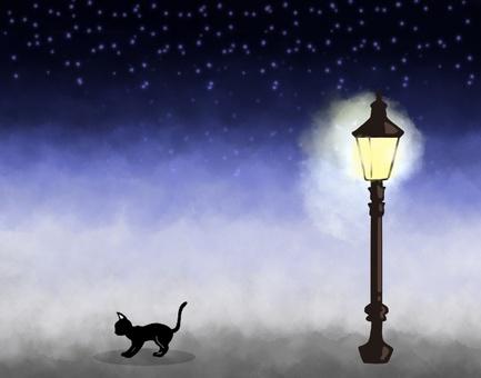 고양이와 밤 가로등