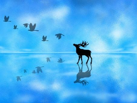 ever blue &animals