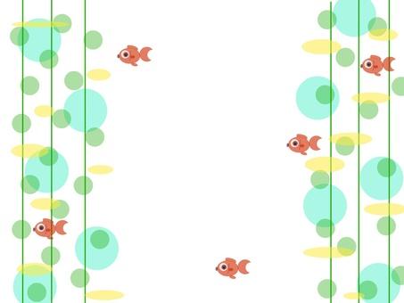 紅色魚在水中