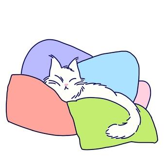 A nap of a cat