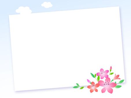 30. Azalea board