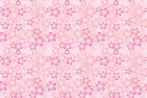 盛開櫻花色板設置01單項