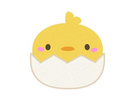 一隻小雞從蛋裡面出來