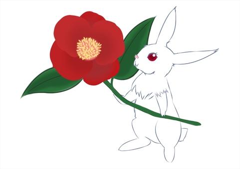 Tsubasi and rabbit