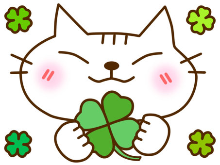 Clover and white cat