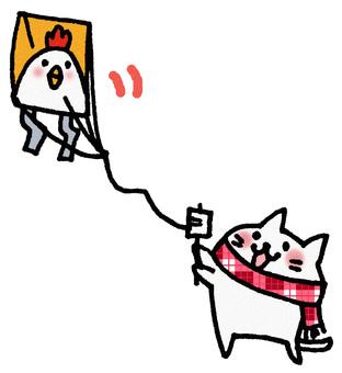 Kite fried cat