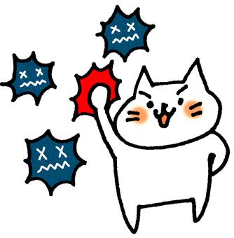 Refuge cat