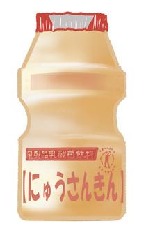 Lactobacillus drinks