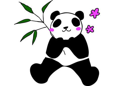 팬더와 대나무 잎