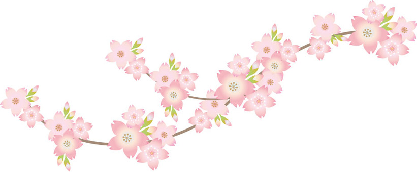 Cherry branch frame material