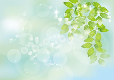 Glittering leaves & sky 16