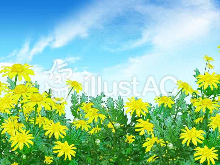 黄色い花の背景のイラスト