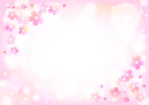 櫻花446
