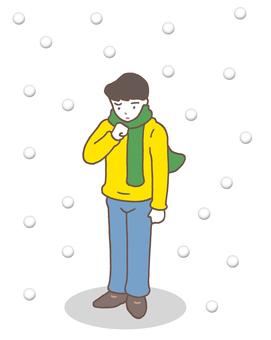 Snowfall / Snowfall