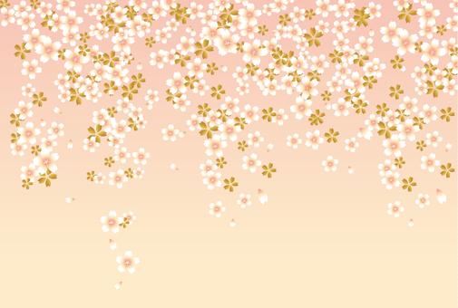 Japanese Pattern Sakura 201706