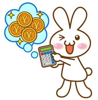 Calculator and rabbit