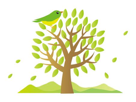나무와 작은 새