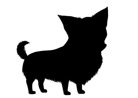 Chihuahuas silhouette