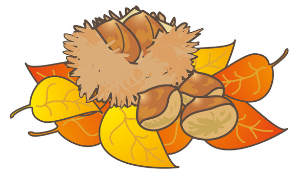 Autumn chestnut and fallen leaves