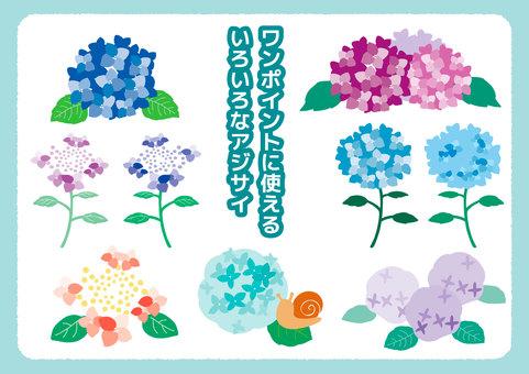 【梅雨】あじさい/紫陽花 イラストセット