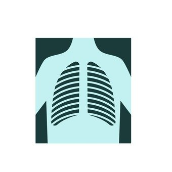 X射線照片