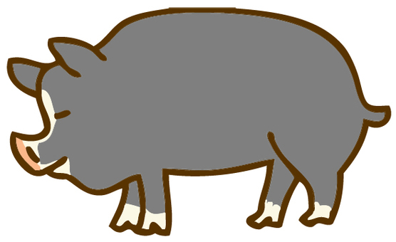 Black pig illustration