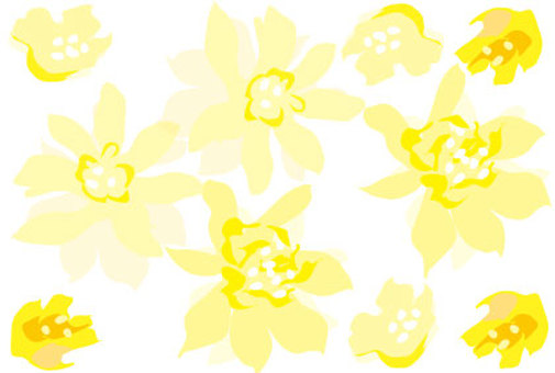Yellow flower wallpaper white background