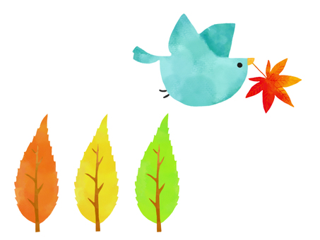 Birds and fall