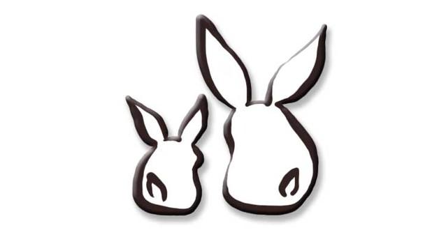 父母和孩子在兔子後面