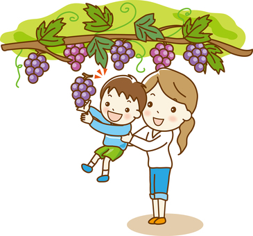 """Grape picking"" 01"
